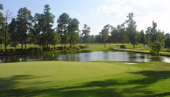 Shannon Greens Golf Club 18th Hole